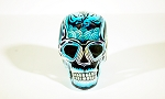 Human Skull - Black And Teal Spirals