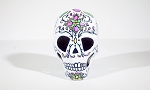 Human Skull - White With Pink Flowers